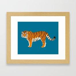 Panthera tigris tigris Framed Art Print