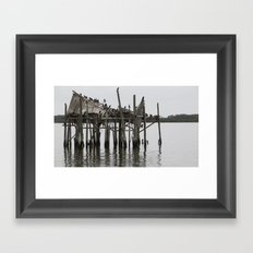Hangin Out Framed Art Print