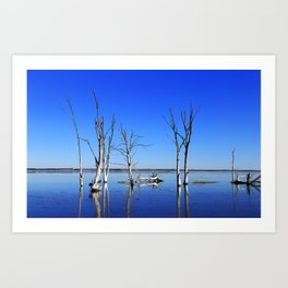 Tree into the water PHOTOGRAPHY Art Print
