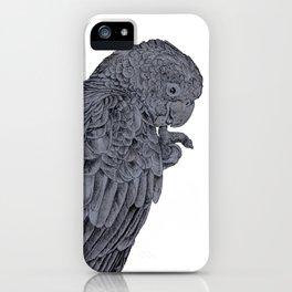 Nibbling Black Cockatoo iPhone Case