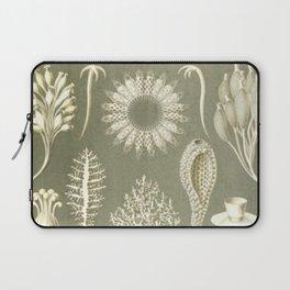 Naturalist Sponges Laptop Sleeve