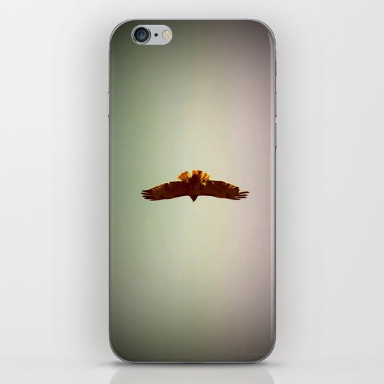 Hawk Eyes iPhone & iPod Skin