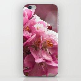 Clash of Seasons iPhone Skin
