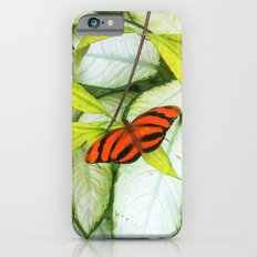Tigerfly Slim Case iPhone 6s
