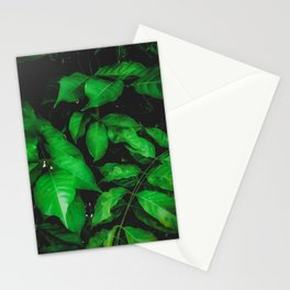 green leaves texture background Stationery Cards