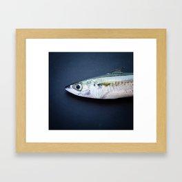 Mackerel Framed Art Print