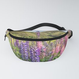Colorful fields of lupines blooming in December in NZ Fanny Pack