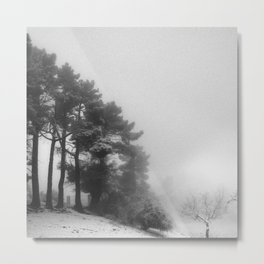 Five trees Metal Print