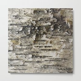 BIRCH TREE BARK Metal Print