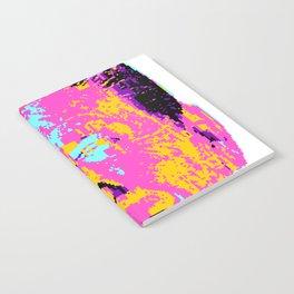 Rayray (2013) Notebook