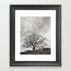 Devil's Den Tree Framed Art Print