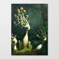 mushrooms Canvas Prints featuring Mushrooms by Andrew McIntosh