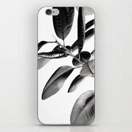 Ficus Elastica Black Gray White Vibes #1 #foliage #decor #art #society6 iPhone Skin