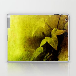 Secret Ivy Laptop & iPad Skin