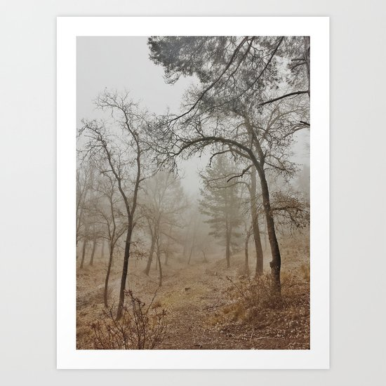 """""""Mistery forest"""". Wandering today Art Print"""