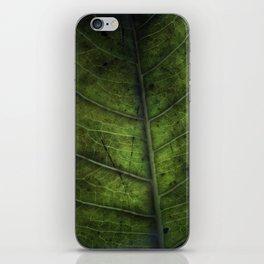 Leaf Five iPhone Skin
