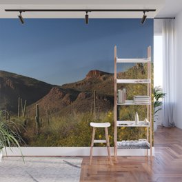 Picture Rocks in Saguaro National Park Wall Mural