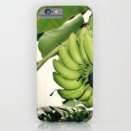 Costa Rican Bananas iPhone Case