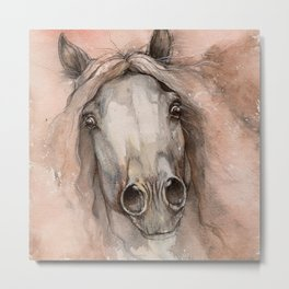 Brown mane Metal Print