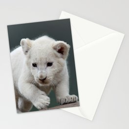 White lion cub Stationery Cards