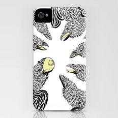 crows iPhone (4, 4s) Slim Case