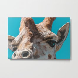 Honk the Horn | Melbourne, Australia Metal Print