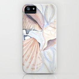 Shells Falls iPhone Case
