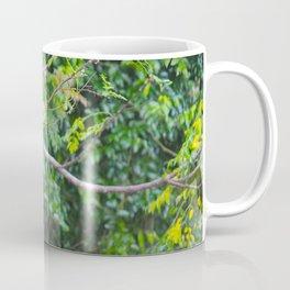 Kookaburras Coffee Mug