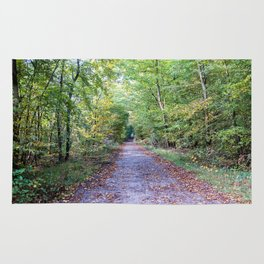 Pathway in the autumn forest Rug