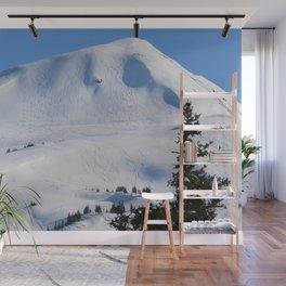 Back-Country Skiing  - III Wall Mural