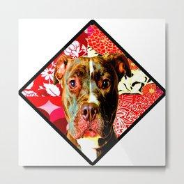 Red And Regal Pitbull Metal Print