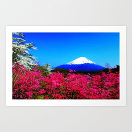 Spring mountain flowers fuji nature Japan Art Print