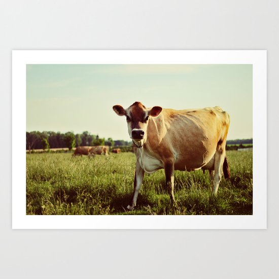 jersey cow Art Print