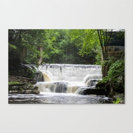 just a trickle Canvas Print