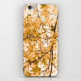 Japanese Maple Tree Acer Palmatum iPhone Skin