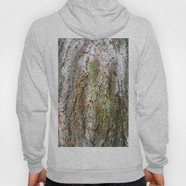 Beauty Tree Trunk Photography Hoody