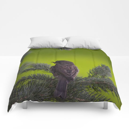 Feathered Friend Comforters
