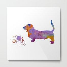 Basset hound Metal Print