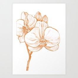 Gold Orchid III Art Print