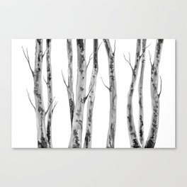 Birch Trees | Indian Ink Illustration | Canadian Art Canvas Print