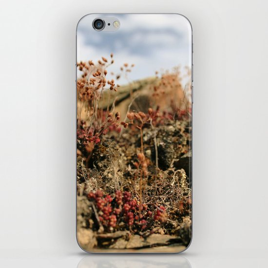 Soul Nature iPhone & iPod Skin