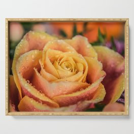 Dew Laden Rose Serving Tray