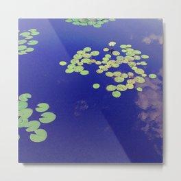 Lotus Pads Metal Print