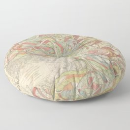 River Cartography Floor Pillow