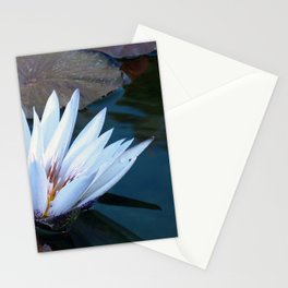 White Water Lilly Stationery Cards