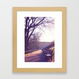 Edinburgh Princes Garden Sunset. Framed Art Print