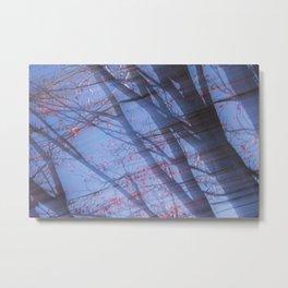 Autumn Motif 3 Metal Print