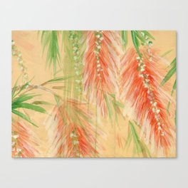 red weeping willow Canvas Print