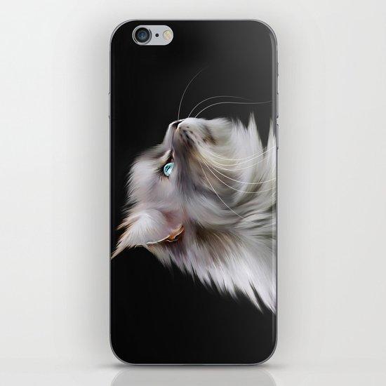 Maine Coon iPhone & iPod Skin