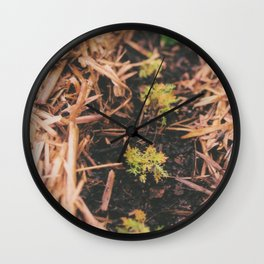 From little things. Wall Clock
